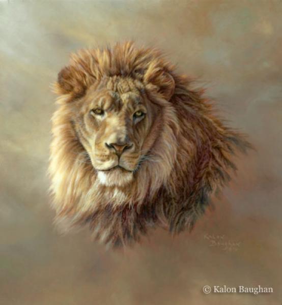 Quot Contemplation Quot Originals Wildlife Kalon Baughan